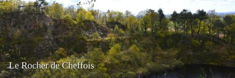 Le Rocher de Cheffois stone grove in the Vendee