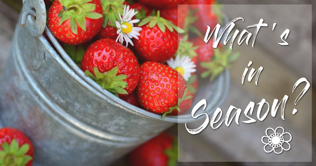 what's in season in France in the spring - fruits and vegetables
