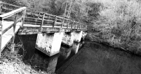 Footbridge Forest Massif de Mervent Vouvant