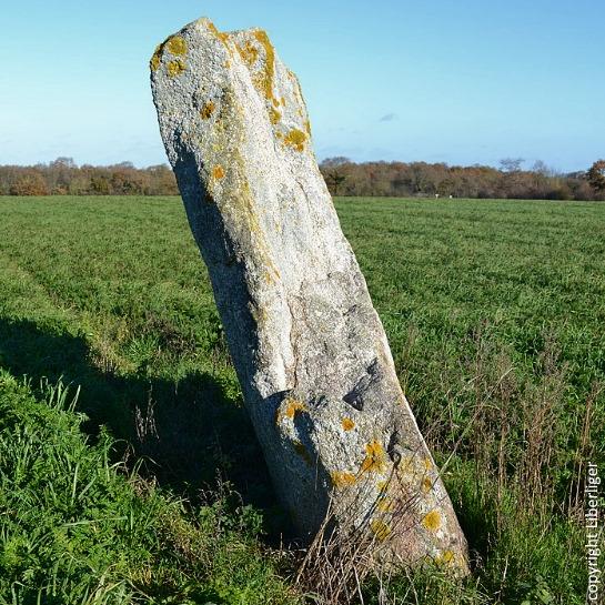 Menhir de la Grande Bernerie Liberliger St Hilaire de Loulay France