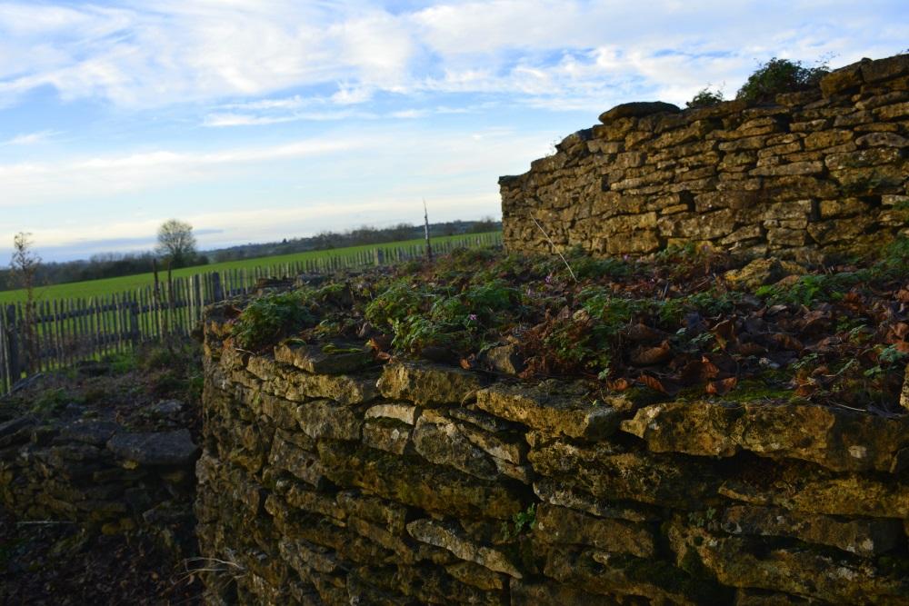 Ciste des Cous Bazoges-en-Pareds prehistoric gravesite
