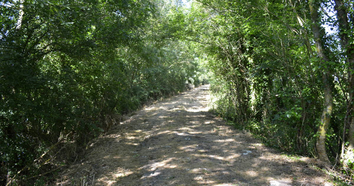 Hiking trail in La Claye village Vendee