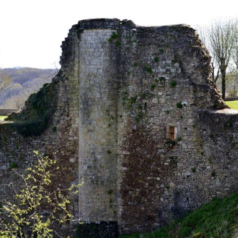 chateau de Mervent in the Vendee