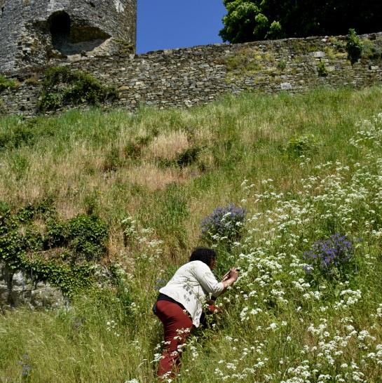 Vouvant et Moi Tours of Vouvant with Marie Vivies