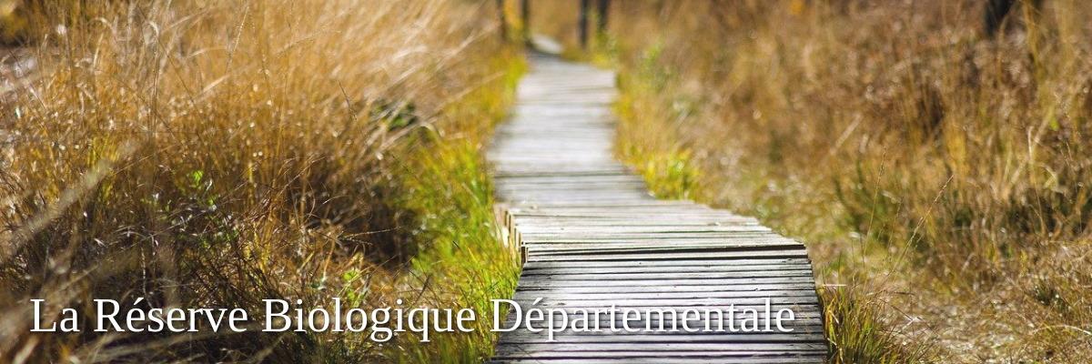 reserve biologique departement vendee - beautiful nature reserve in the marais poitevin